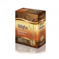 Хна стерилизованная витаминизированная Aasha herbals 80 гр